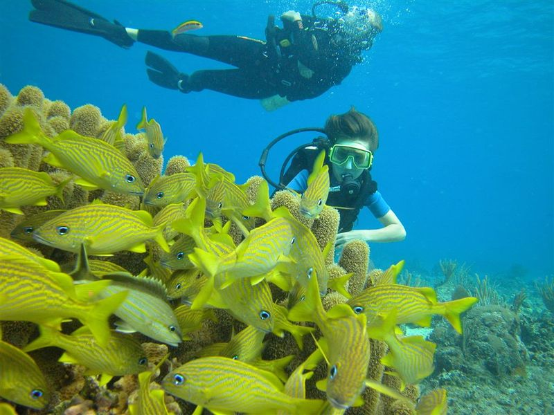 Best scuba diving spots in the world: Belize