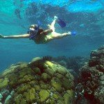 Mexico Rocks Snorkeling Tour