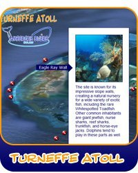 Discover Turneffe Atoll Dive Sites