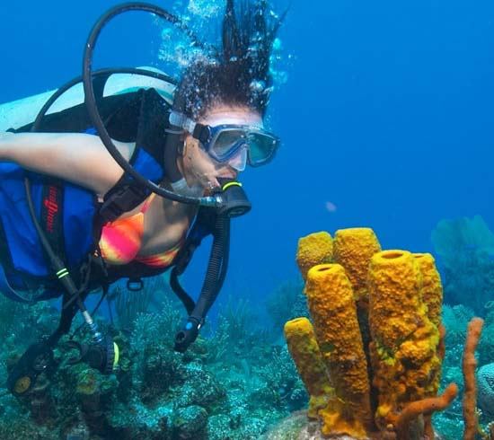 Belize Scuba Diving And Snorkeling Tours In Ambergris Caye