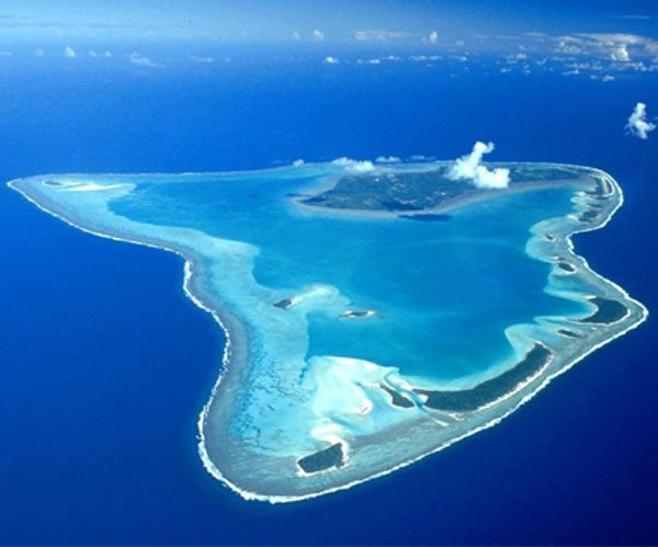 Image result for Turneffe Atoll Diving