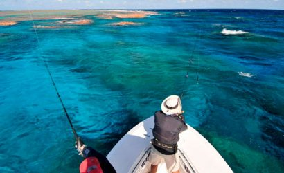 Reef Fishing - Ambergris Divers