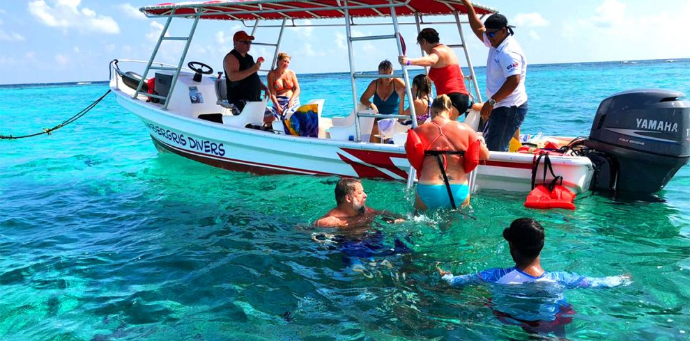 Snorkeling Hol Chan & Shark Ray Alley - Ambergris Divers