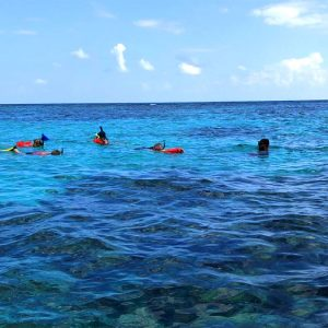 Snorkeling Mexico Rocks - Ambergris Divers